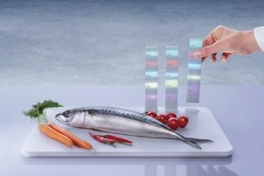92871 PD Food Probe 25977